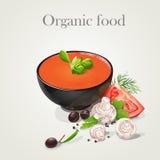 Tomato soup with fresh vegetables-EPS10. Tomato soup with fresh vegetables. Organic food Royalty Free Stock Photo