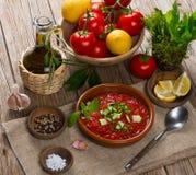 Tomato soup gaspacho Royalty Free Stock Photos
