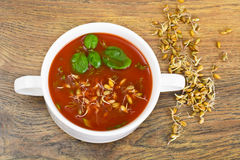 Tomato Soup with Germinated Grain in Plate. National Italian Cui Stock Photos