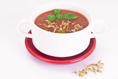 Tomato Soup with Germinated Grain in Plate. National Italian Cui Royalty Free Stock Image