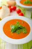 Tomato soup with gremolata Stock Images