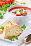 Tomato Soup With Oregano Stock Photos