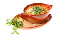 Tomato soup, parsley isolated white background Royalty Free Stock Image