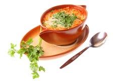 Tomato soup, parsley isolated white background Royalty Free Stock Images