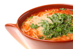 Tomato soup, parsley isolated white background Royalty Free Stock Photography