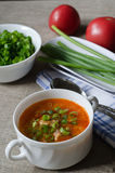 Tomato soup with rice and meat Royalty Free Stock Images