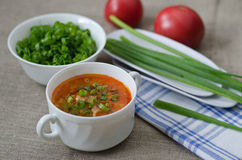 Tomato soup with rice and meat Stock Image