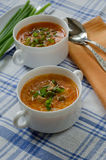 Tomato soup with rice and meat Stock Photo