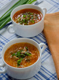 Tomato soup with rice and meat Royalty Free Stock Photo