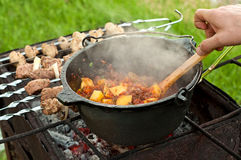 Tomato soup and shashlik on the fire Stock Photo