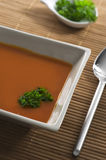 Tomato soup in square bowl. Tomato soup with chervil in square bowl. Spoon beside bowl.  Little pot with chevil on background Royalty Free Stock Image