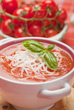 Tomato soup. Thick tomato soup with noodles and basil Stock Images
