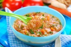 Tomato soup with vegetables for baby Stock Image