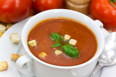Tomato soup in white bowl Stock Images