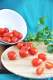 Tomato spill out of bowl Stock Photography