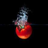 Tomato splash Royalty Free Stock Image