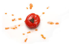 Tomato Splattered. Tomato is splattered and the seeds spray out Royalty Free Stock Image