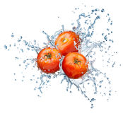 Tomato in spray of water. Royalty Free Stock Photography