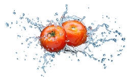 Tomato in spray of water. Royalty Free Stock Images