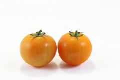 Tomato with stem Royalty Free Stock Photo