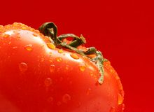 Tomato super close-up. Tomato with water drops super close-up over red background stock photography