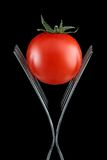 Tomato on two forks. A small tomato on two forks, isolated on a black background royalty free stock image