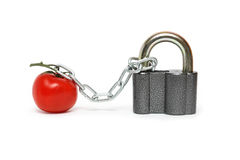 Tomato Under Arrest Royalty Free Stock Photography