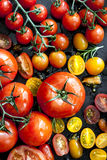 Tomato Varieties on Black Overhead View Stock Photos