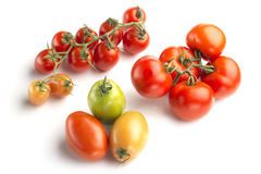 Tomato varieties Royalty Free Stock Images