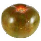The tomato variety kumato Stock Photography