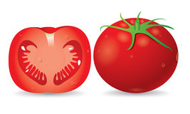 Tomato vector Royalty Free Stock Images