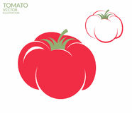 Tomato. Vector Stock Image