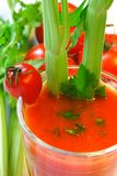 Tomato vegetable cocktail. With celery sticks Royalty Free Stock Photo