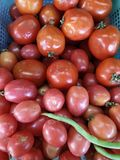 Tomato vegetable. Red tomato in market Royalty Free Stock Photography