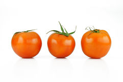 Tomato vegetable. On white background Royalty Free Stock Photography