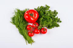 Tomato Vegetables with Dill and Parsley Leaves Stock Photography