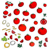 Tomato vegetables icons with spicy herbs. Red tomato vegetables icons with branch of sweet cherry tomatoes, green twigs of parsley and dill, sliced bell pepper stock illustration
