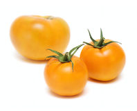 Tomato Vegetables Isolated On White Royalty Free Stock Photography
