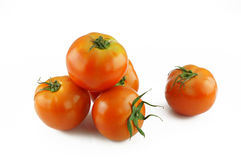 Tomato vegetables. On white background Royalty Free Stock Photo