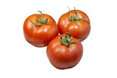 Tomato very good sids Royalty Free Stock Images