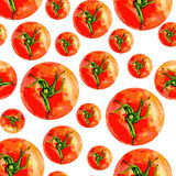 Tomato vetor watercolor illustration isolated on white background, Vector seamless pattern Royalty Free Stock Photos