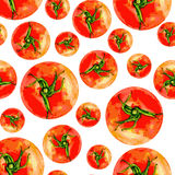 Tomato vetor watercolor illustration isolated on white background, Vector seamless pattern,Template for menu, product Stock Images
