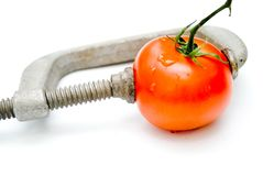 Tomato in a vice/concept Royalty Free Stock Photo