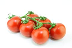 Tomato on vine. Stock Photos