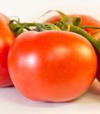 Tomato on the vine Stock Image