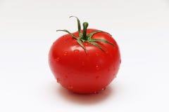 Tomato on a Vine Stock Image