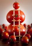 Tomato. Royalty Free Stock Photos