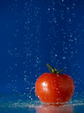 Tomato and Water Stock Images
