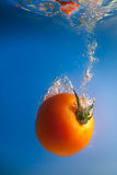 Tomato in water Royalty Free Stock Image