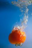 Tomato in water Royalty Free Stock Images